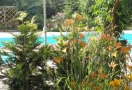 Doorkijkje bij het zwembad