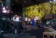Concert tijdens wijnfeest