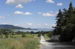 Heuvels bij het Balatonmeer