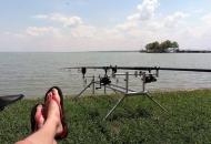 Relaxed vissen in het Balatonmeer