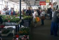 tapolca-overdekte-markt