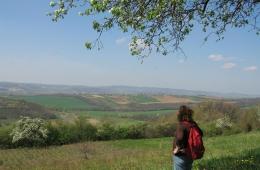 Uitzicht bij het dorp