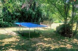 Tafeltennistafel in de achtertuin bij Villa Zala